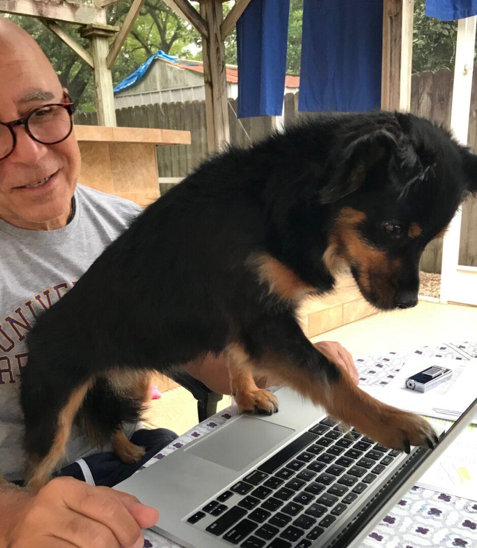 Vivi_Laptop2